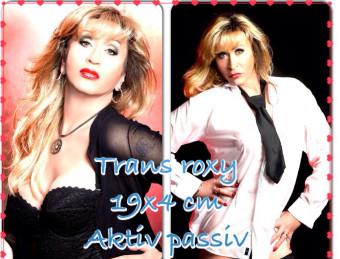1. Bild von  Trans Roxy  in Berlin